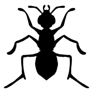 silhueta de formiga para imprimir