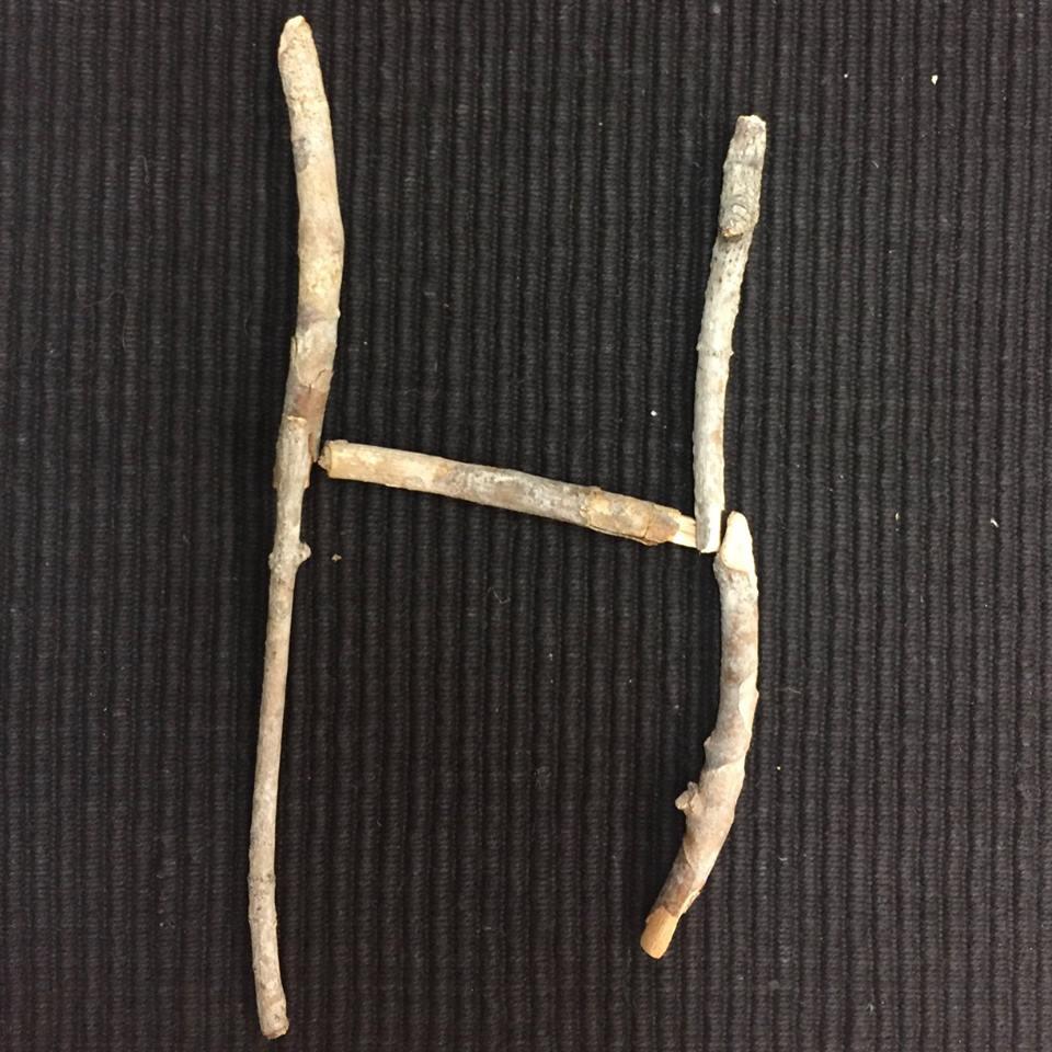 alfabeto com materiais naturais 08