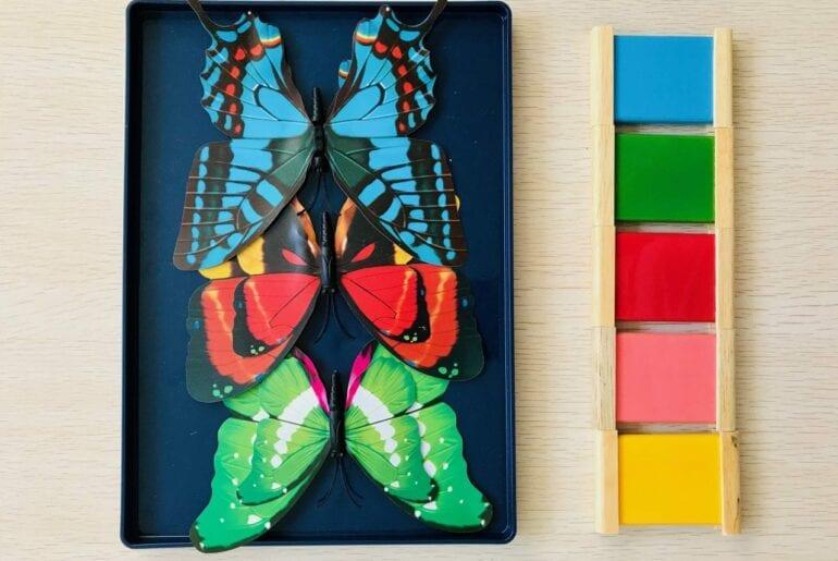 atividade-com-borboleta-pareamento-de-cores-01-770x515