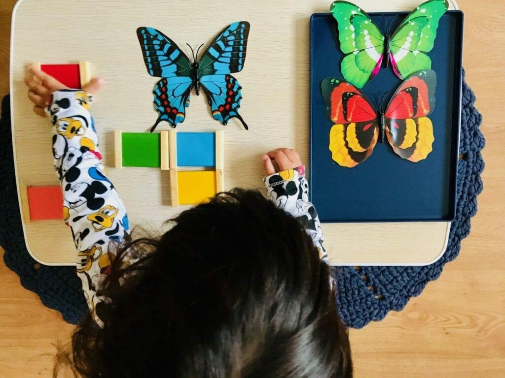 atividade-com-borboleta-pareamento-de-cores-04-1024x768