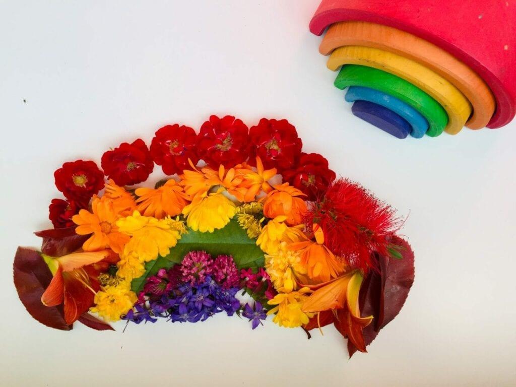 flores com as cores do arco iris 01