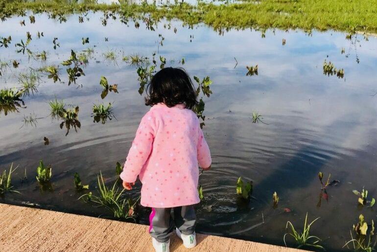 importancia do ritmo das criancas segundo waldorf