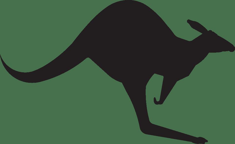 Recriando um canguru com pecas soltas 06