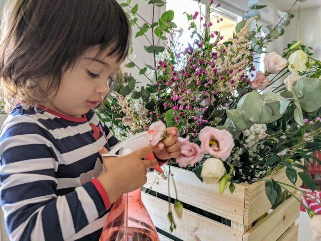cuidar das plantas
