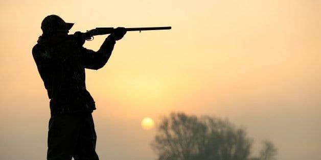 O caçador furtivo