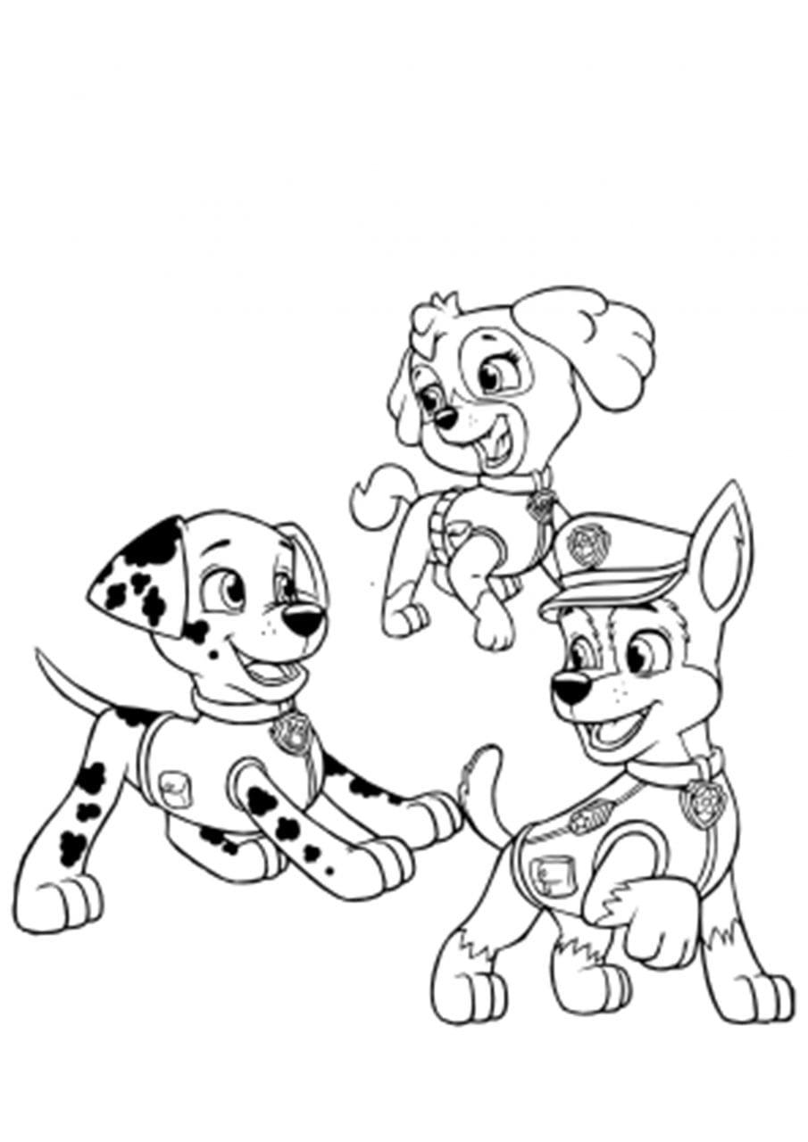 Patrulha Canina Pintar E Imprimir Criando Com Apego