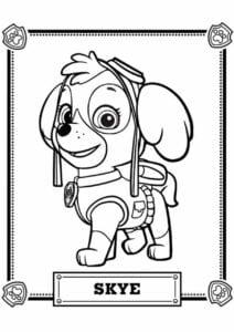 Skye Patrulha Canina para colorir