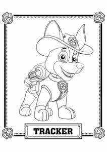 Tracker Patrulha Canina para colorir