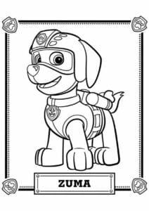 Zuma Patrulha Canina para colorir