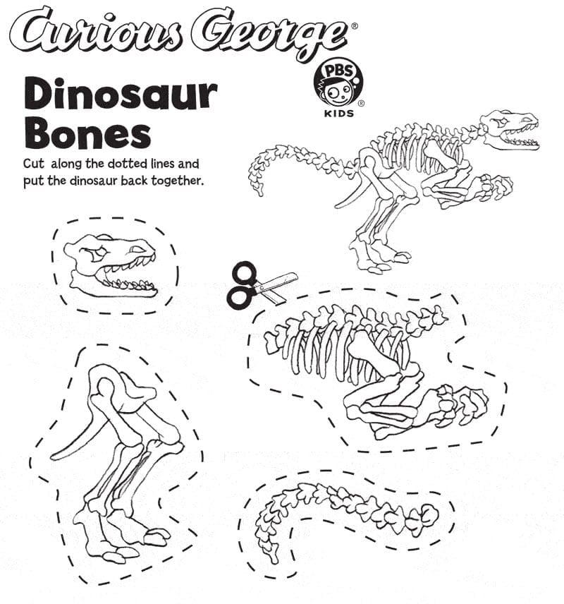 Atividade de montar fosseis de dinossauros 01