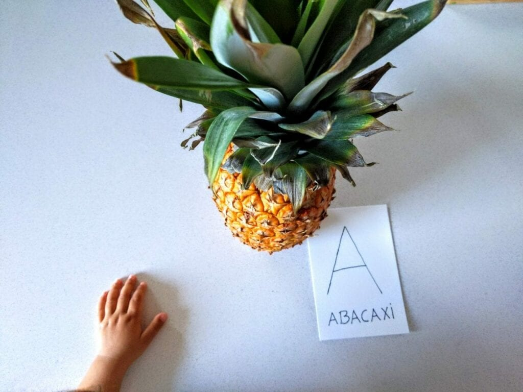 Atividade para explorar os sentidos com abacaxi 01