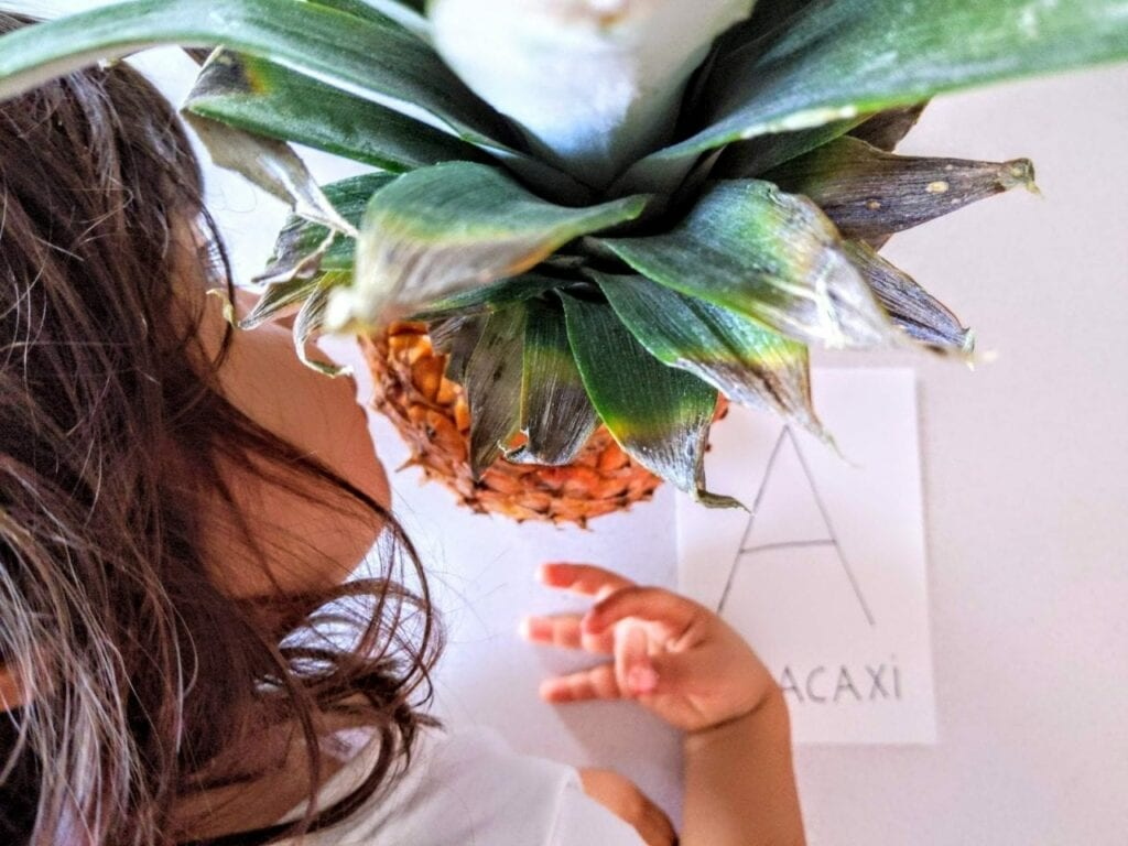 Atividade para explorar os sentidos com abacaxi 09
