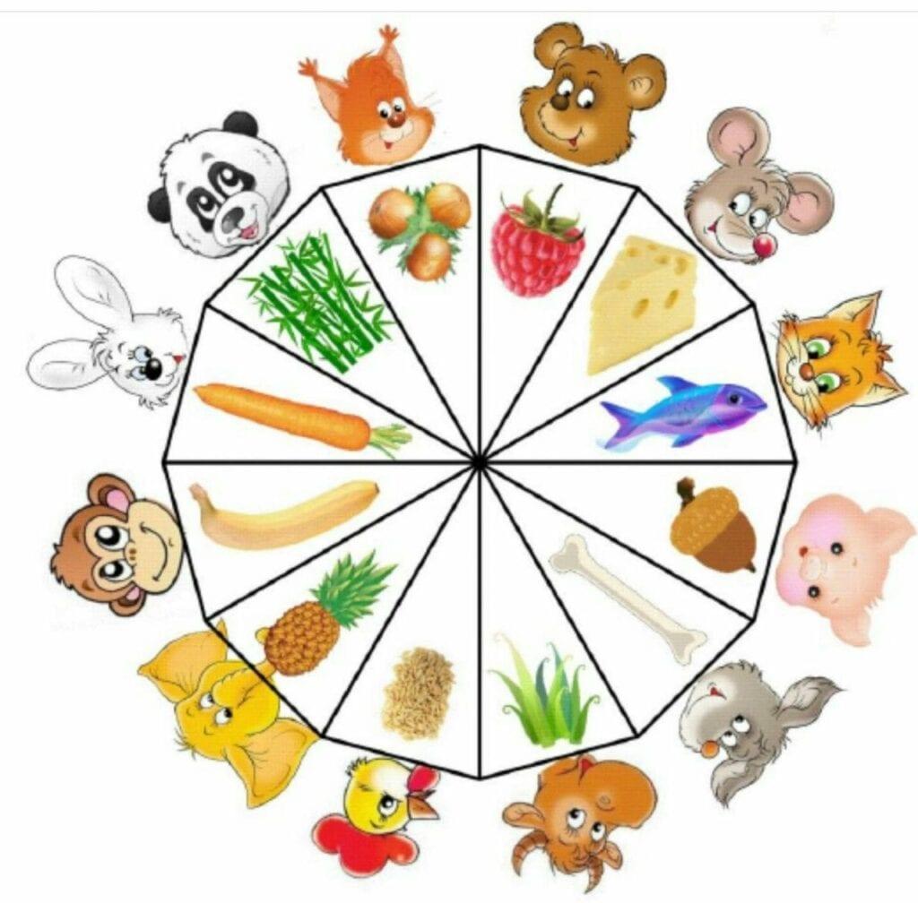 o que come cada animal 02