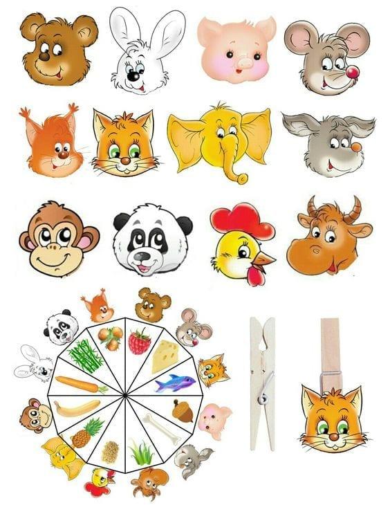 o que come cada animal 03
