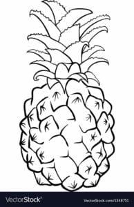 abacaxi para pintar