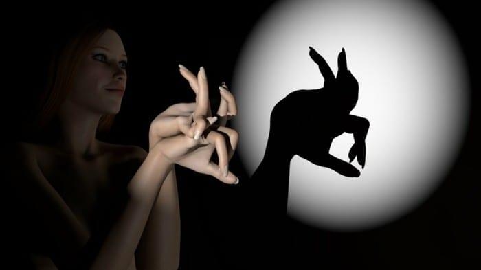 animais de sombras com as maos 00