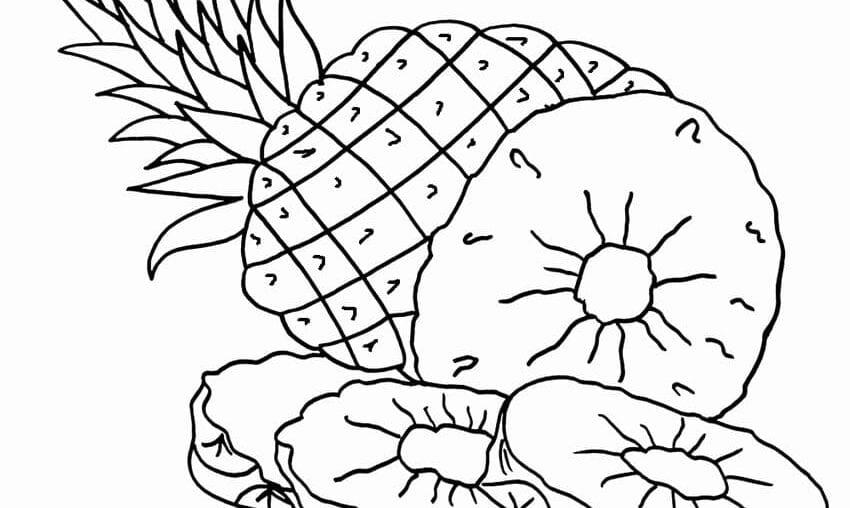 figuras para colorir de abacaxi