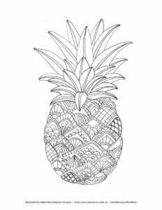 frutas para colorir abacaxi