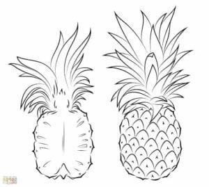 imagens de abacaxi para pintar