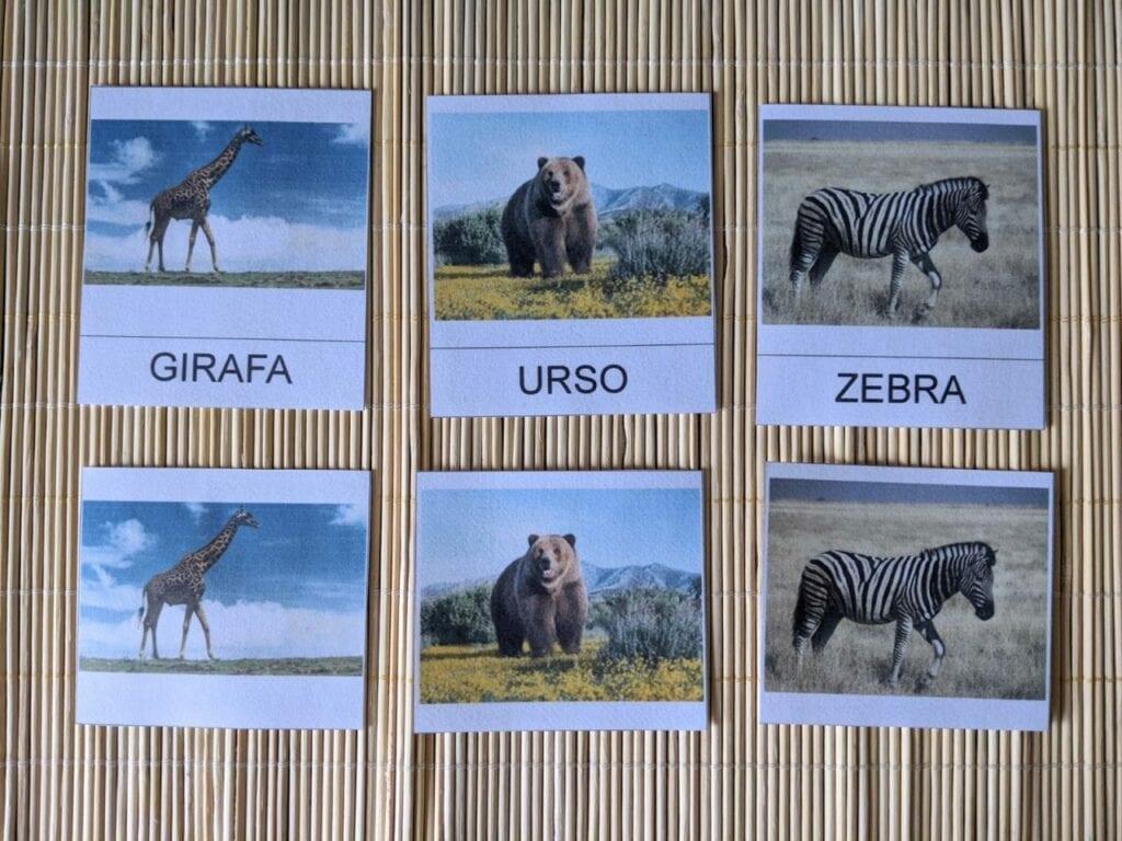cartoes de tres partes animais selvagens 01