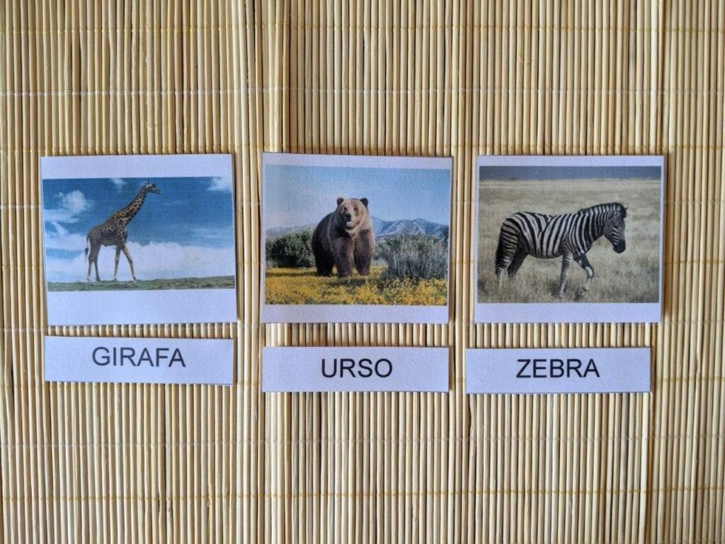 cartoes de tres partes animais selvagens 06