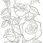 desenhos para colorir primavera maternal