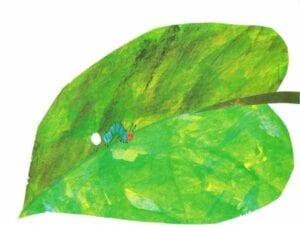 ciclo da borboleta uma lagarta comilona 00