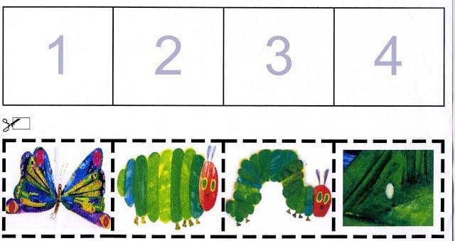 ciclo da borboleta uma lagarta comilona