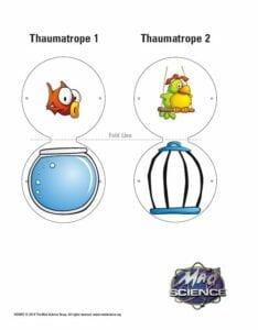 taumatropio brinquedo ilusao optica 11