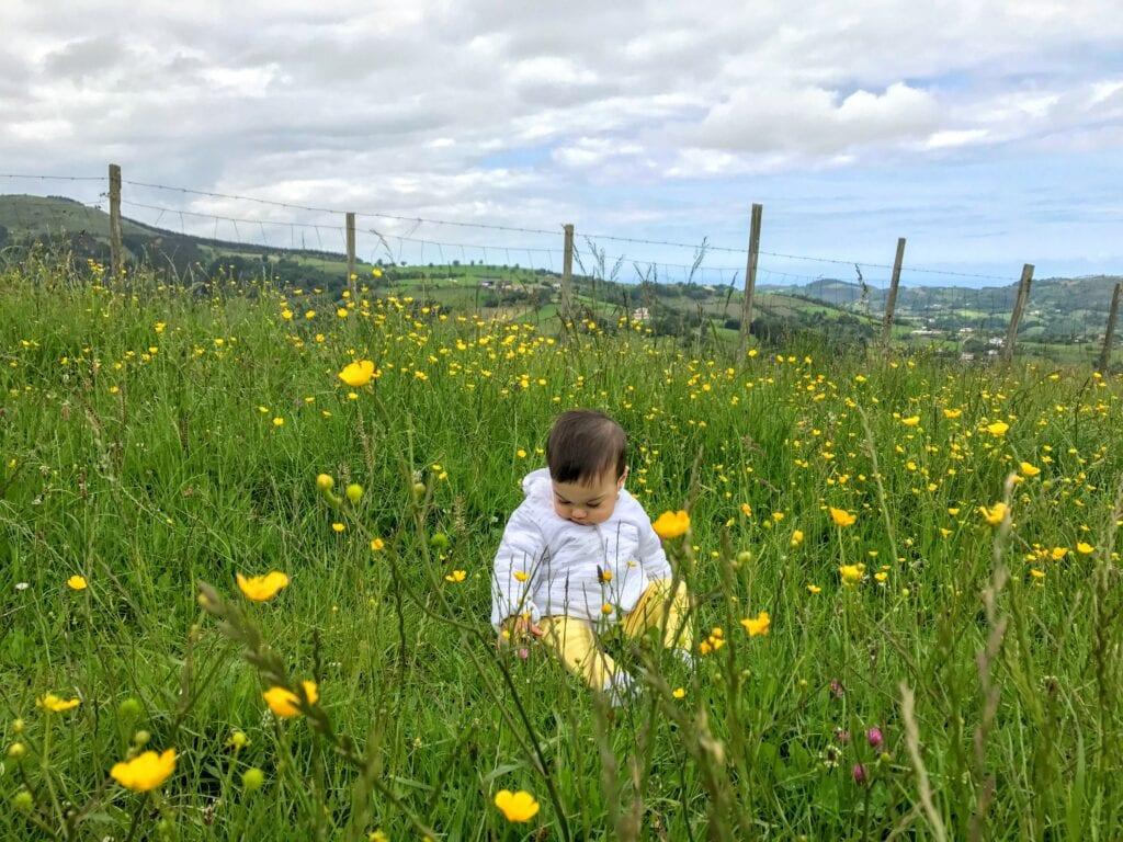 atividade com flor para educacao infantil