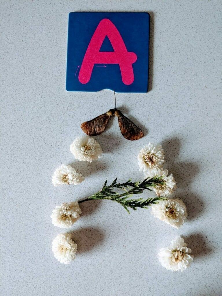 atividade com flores para alfabetizacao a