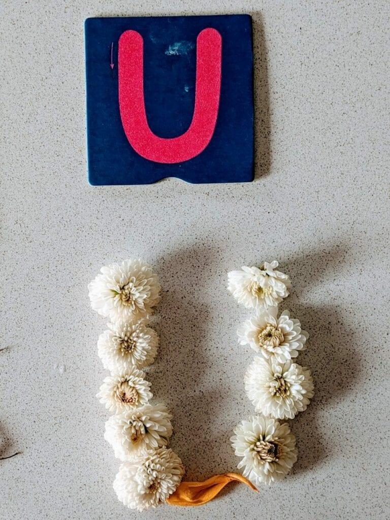 atividade com flores para alfabetizacao u