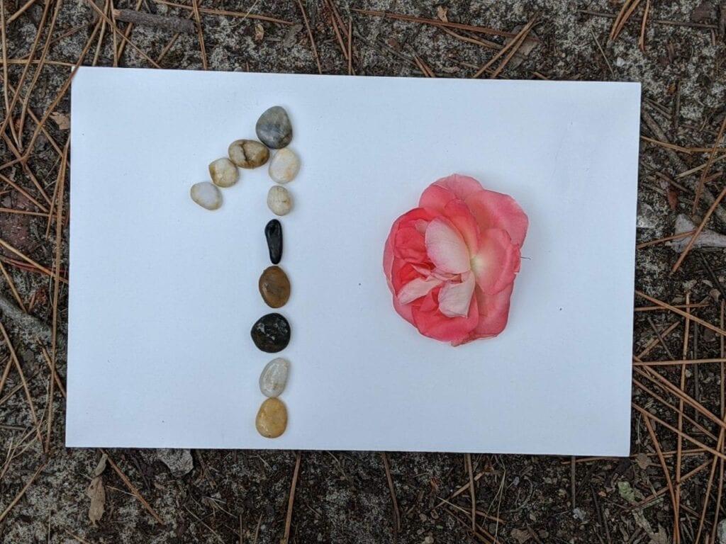atividade de contagem com flores e folhas