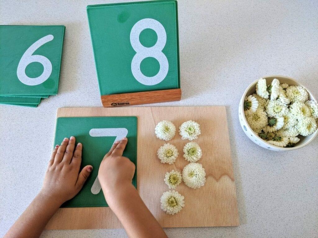 atividade de contar numeros com flores