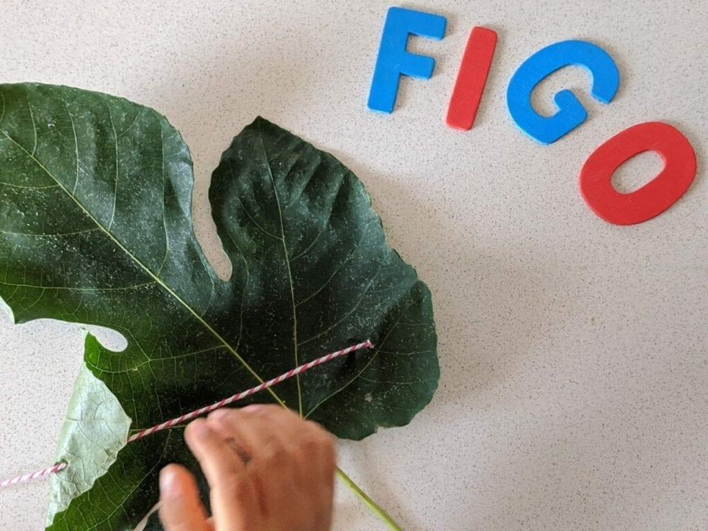 atividades sobre figo para criancas 07