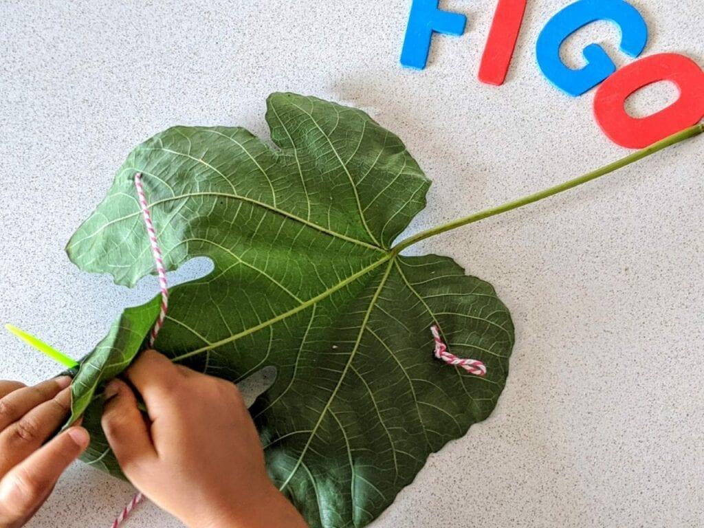 atividades sobre figo para criancas 08