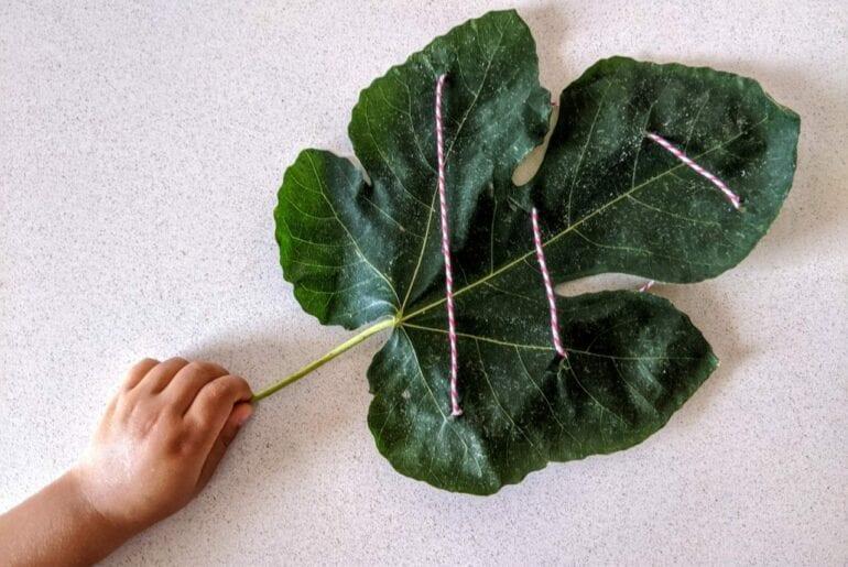 atividades sobre figo para criancas 09