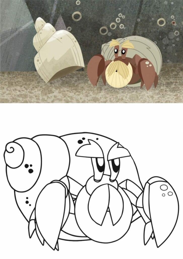 bernie puffin rock caranguejo ermitao