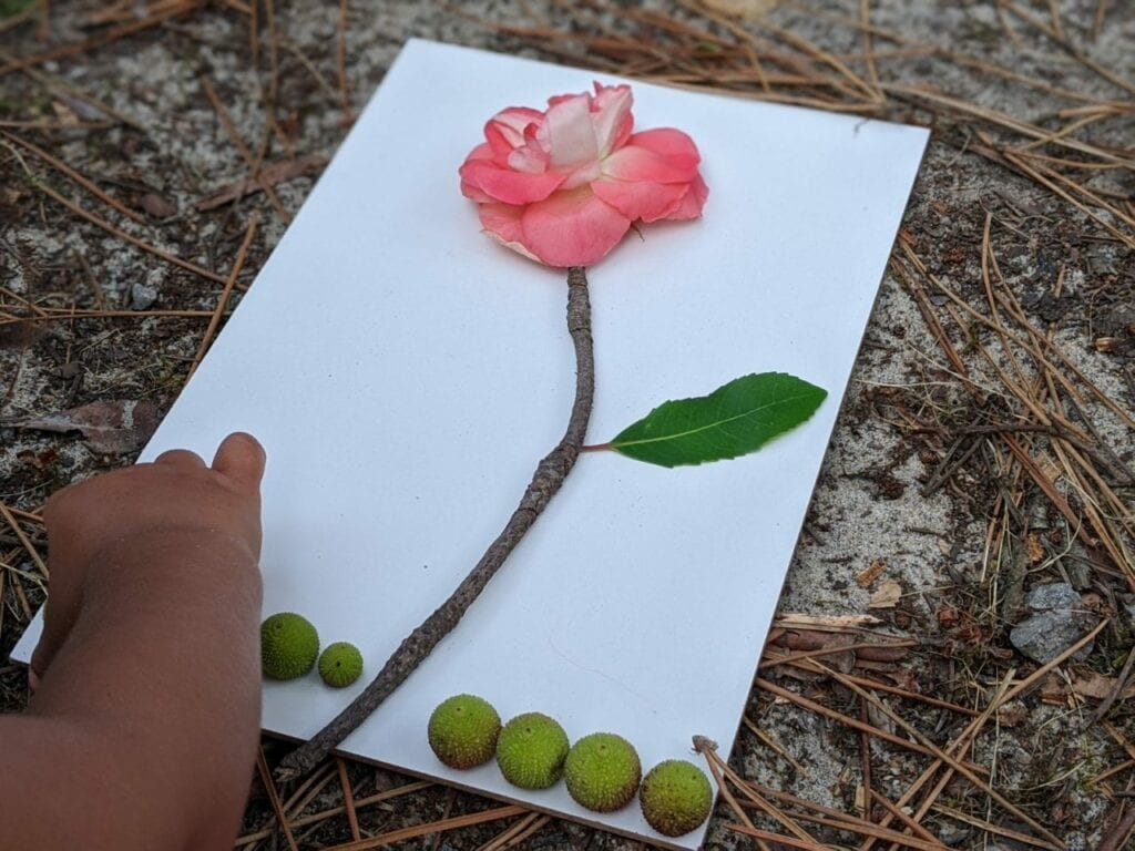 desenhar com a natureza