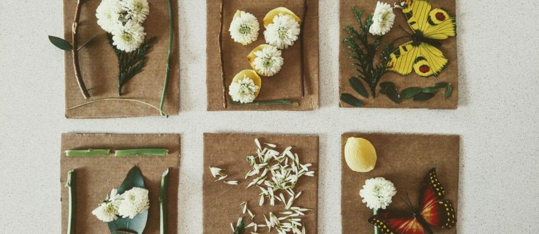 quadros com flores e elementos da natureza