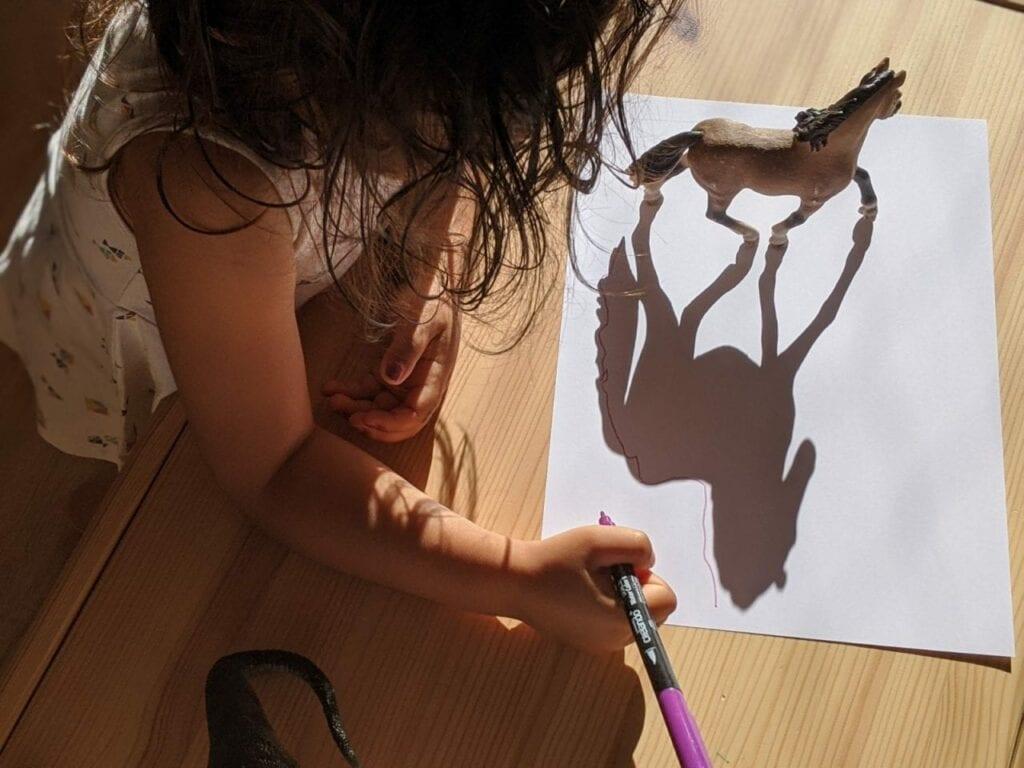 Atividade com desenho de sombra 04