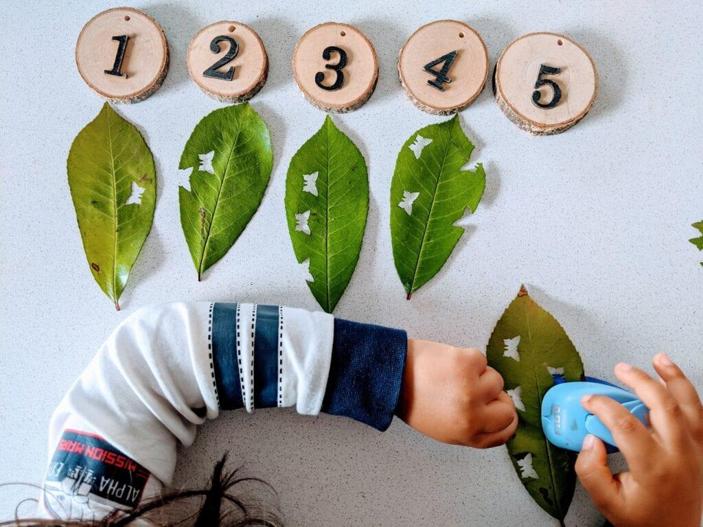 atividade de matematica sobre a primavera