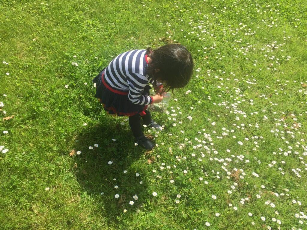 atividade primavera para educacao infantil
