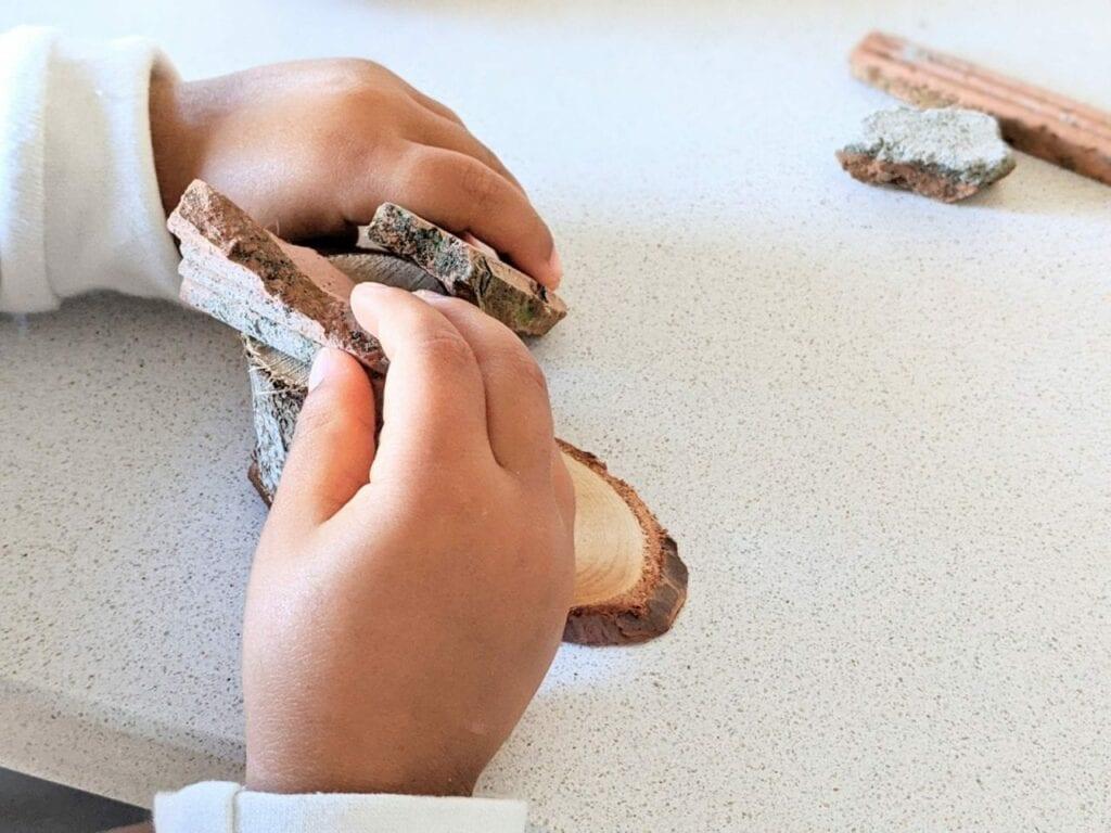 atividades dos tres porquinhos para educacao infantil 02