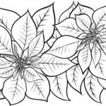 flor de pascoa para pintar simbolo de natal