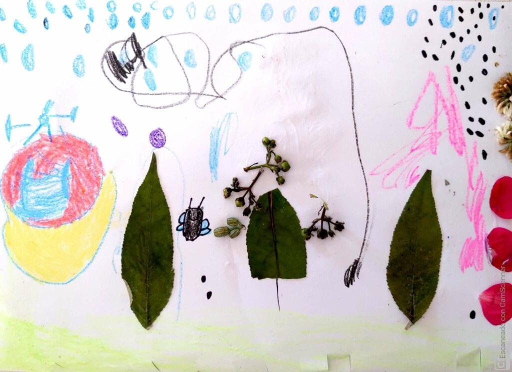 desenho e natureza 01