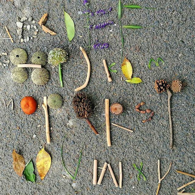 aprender o alfabeto na natureza