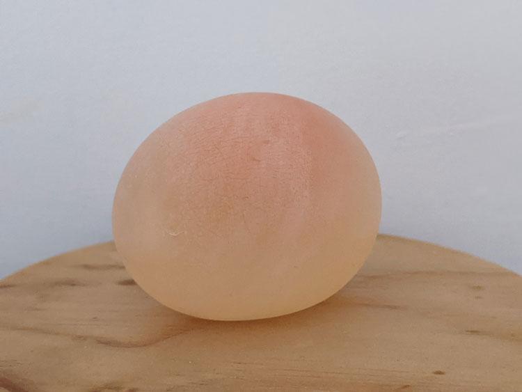 Experimento do ovo com vinagre